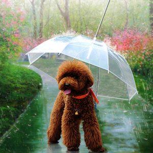 Paraguas para perros, con correa para arnés