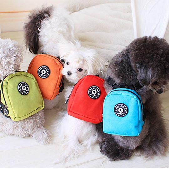 1de52708e31c Ropa y accesorios para tu mascota - Club de Perros y Gatos