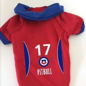 Camiseta de futbol Pitbull