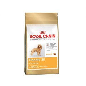 ROYAL CANIN POODLE ADULTO 2.5 KG