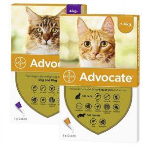 Advocate antiparasitario interno y externo para Gatos
