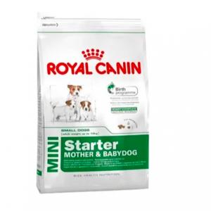 ROYAL CANIN | MINI STARTER MADRE & CACHORROS 3KG