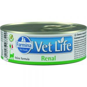 VETLIFE  CAT RENAL 85 GRS