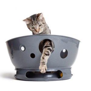JACKSON GALAXY SPACE STATION CAT